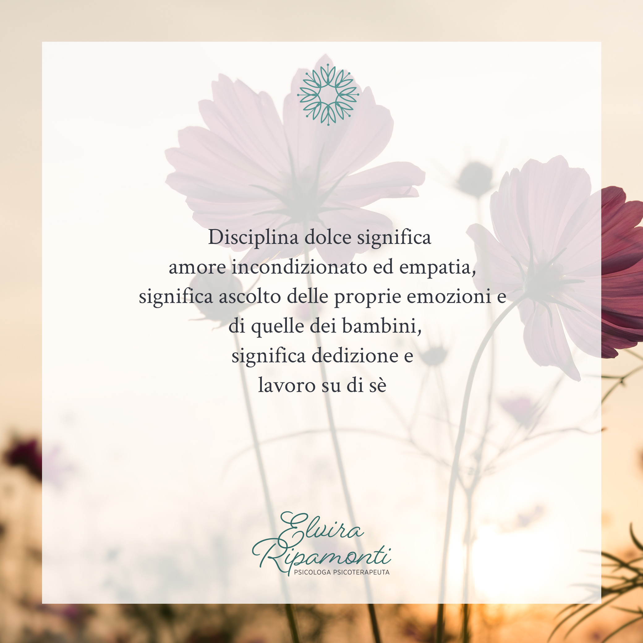 img disciplina dolce 2
